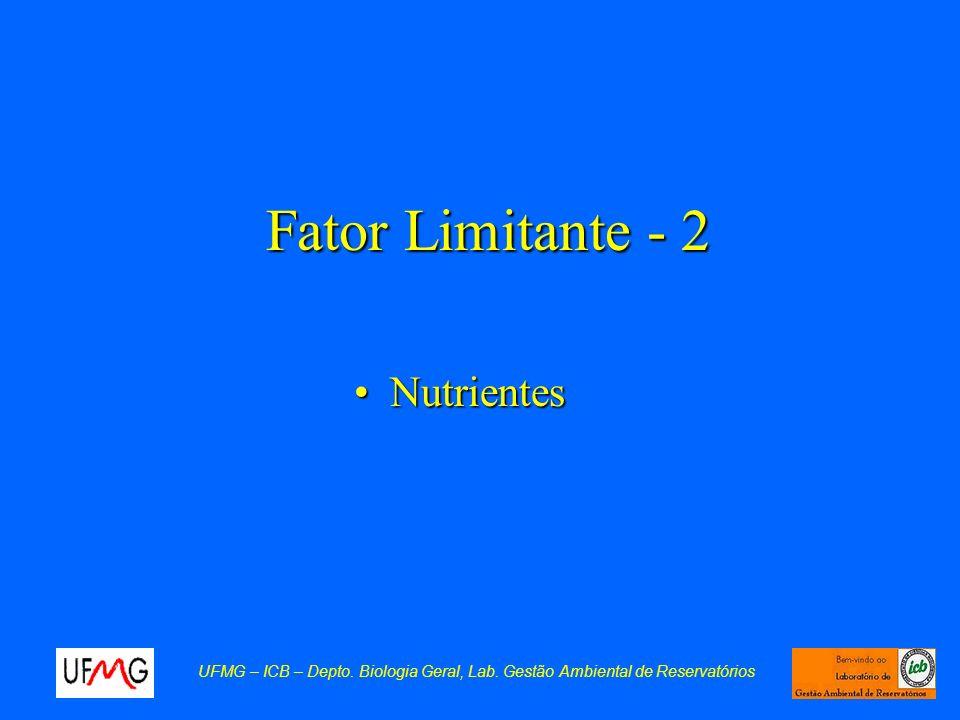 Fator Limitante - 2 NutrientesNutrientes UFMG – ICB – Depto. Biologia Geral, Lab. Gestão Ambiental de Reservatórios