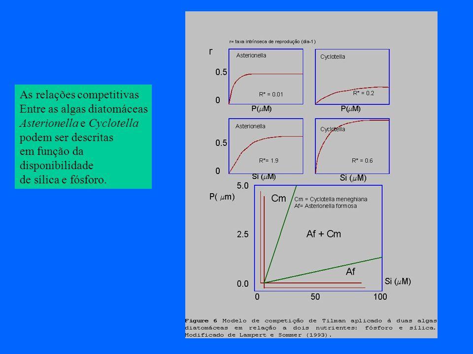 As relações competitivas Entre as algas diatomáceas Asterionella e Cyclotella podem ser descritas em função da disponibilidade de sílica e fósforo.