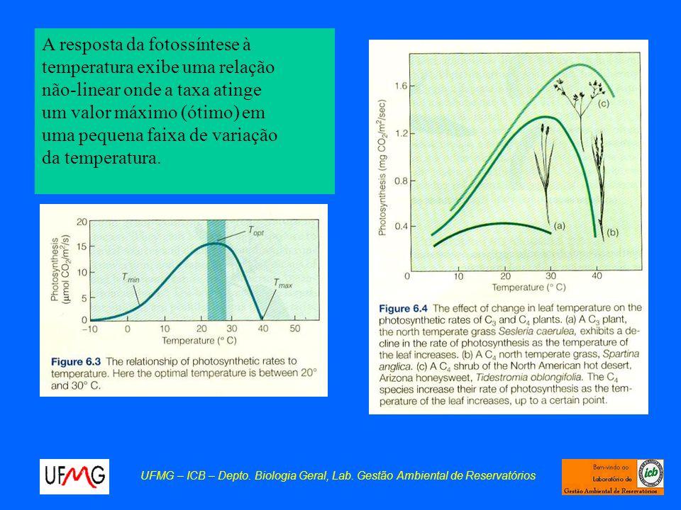 UFMG – ICB – Depto. Biologia Geral, Lab. Gestão Ambiental de Reservatórios A resposta da fotossíntese à temperatura exibe uma relação não-linear onde