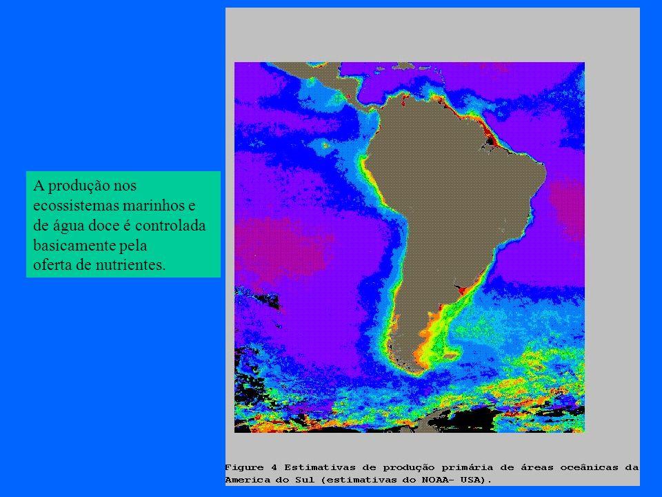 A produção nos ecossistemas marinhos e de água doce é controlada basicamente pela oferta de nutrientes.