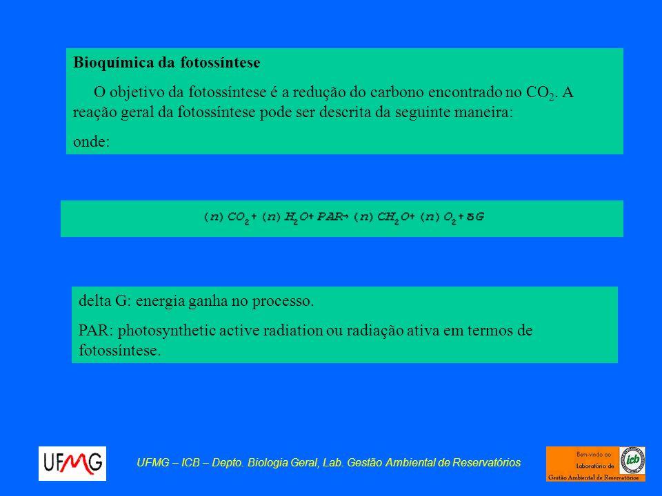 delta G: energia ganha no processo. PAR: photosynthetic active radiation ou radiação ativa em termos de fotossíntese. Bioquímica da fotossíntese O obj