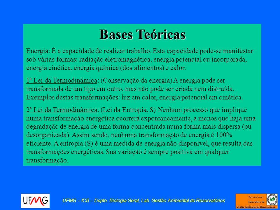 Bases Teóricas Energia: É a capacidade de realizar trabalho. Esta capacidade pode-se manifestar sob várias formas: radiação eletromagnética, energia p