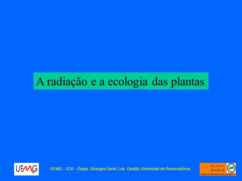 A radiação e a ecologia das plantas UFMG – ICB – Depto. Biologia Geral, Lab. Gestão Ambiental de Reservatórios