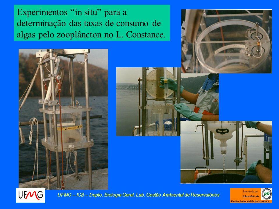 Os experimentos consistiam de uma curta exposição (5-10 min) do zooplâncton a uma solução algal onde as algas eram previamente marcadas com 14C.