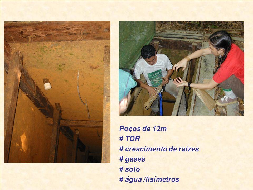 Poços de 12m # TDR # crescimento de raízes # gases # solo # água /lisímetros
