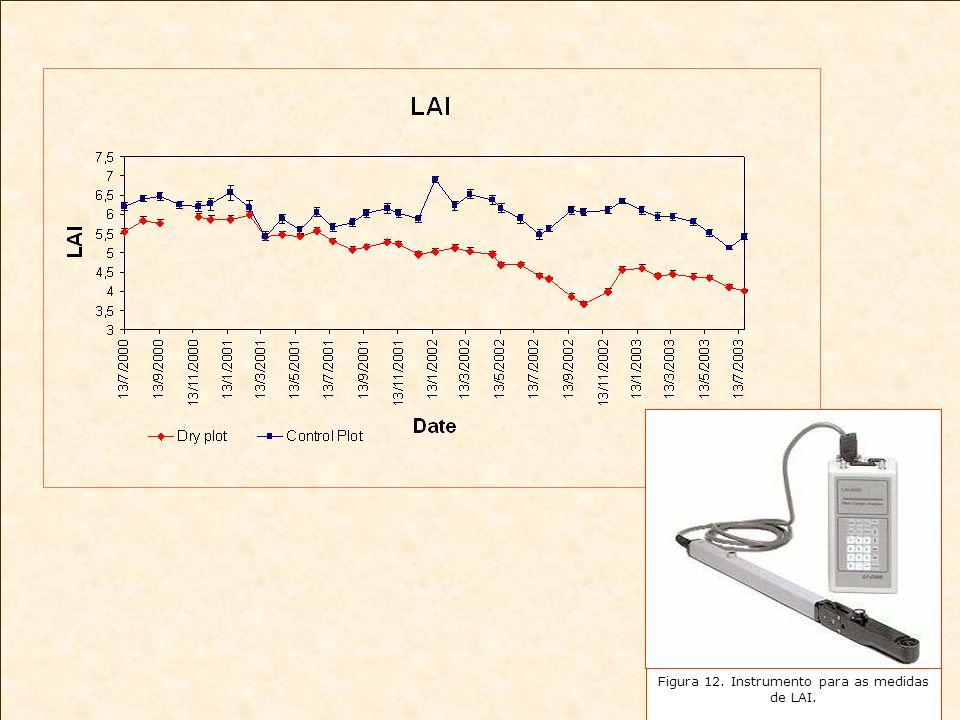 Figura 12. Instrumento para as medidas de LAI.