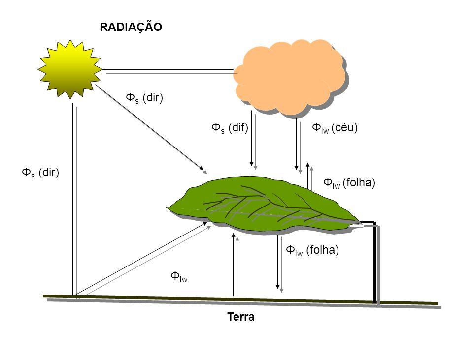Φ s (dir) RADIAÇÃO Φ s (dir) Φ lw Φ lw (folha) Φ s (dif)Φ lw (céu) Φ lw (folha) Terra