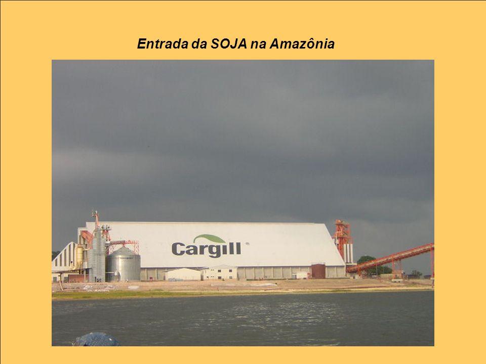 Entrada da SOJA na Amazônia