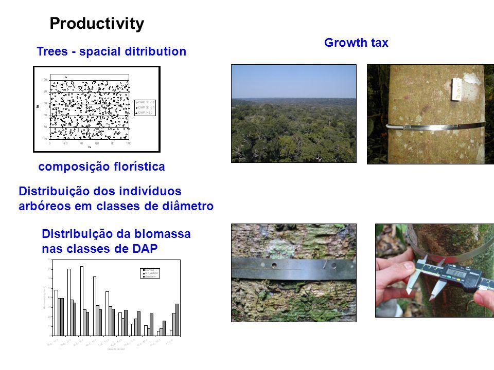 Trees - spacial ditribution Productivity composição florística Distribuição dos indivíduos arbóreos em classes de diâmetro Distribuição da biomassa nas classes de DAP Growth tax