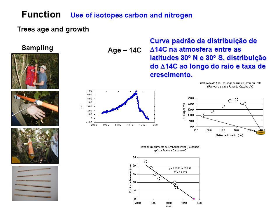Use of isotopes carbon and nitrogen Function Trees age and growth Sampling Age – 14C Curva padrão da distribuição de 14C na atmosfera entre as latitudes 30º N e 30º S, distribuição do 14C ao longo do raio e taxa de crescimento.
