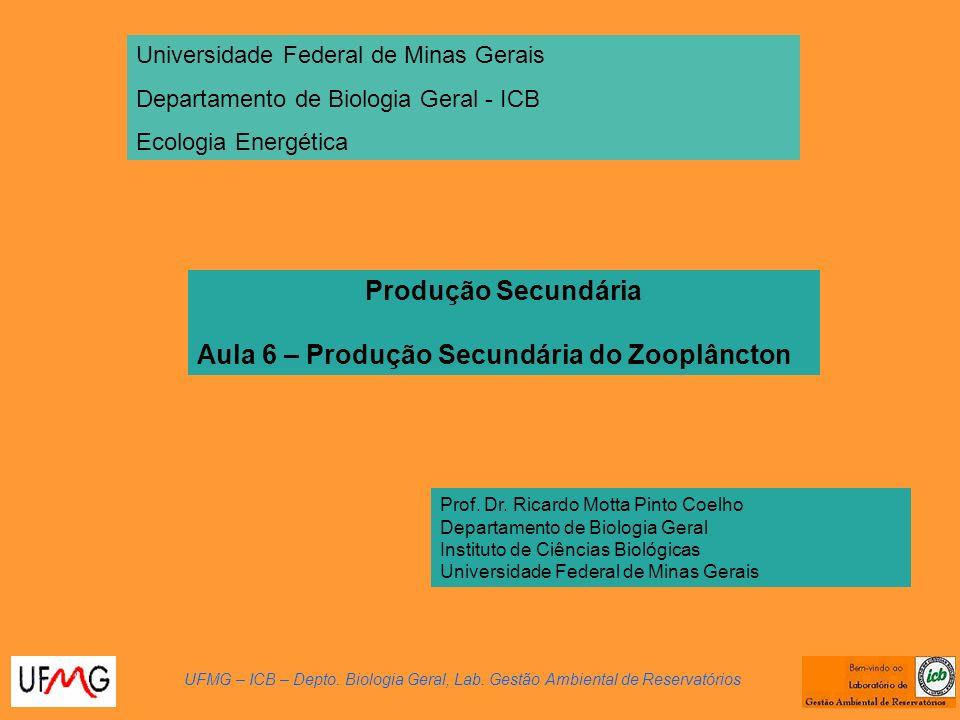 Produção Secundária Aula 6 – Produção Secundária do Zooplâncton UFMG – ICB – Depto. Biologia Geral, Lab. Gestão Ambiental de Reservatórios Prof. Dr. R