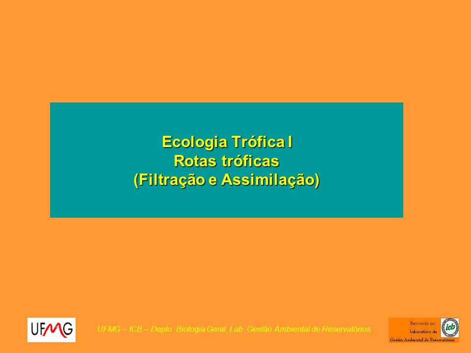 Ecologia Trófica I Rotas tróficas (Filtração e Assimilação) UFMG – ICB – Depto.