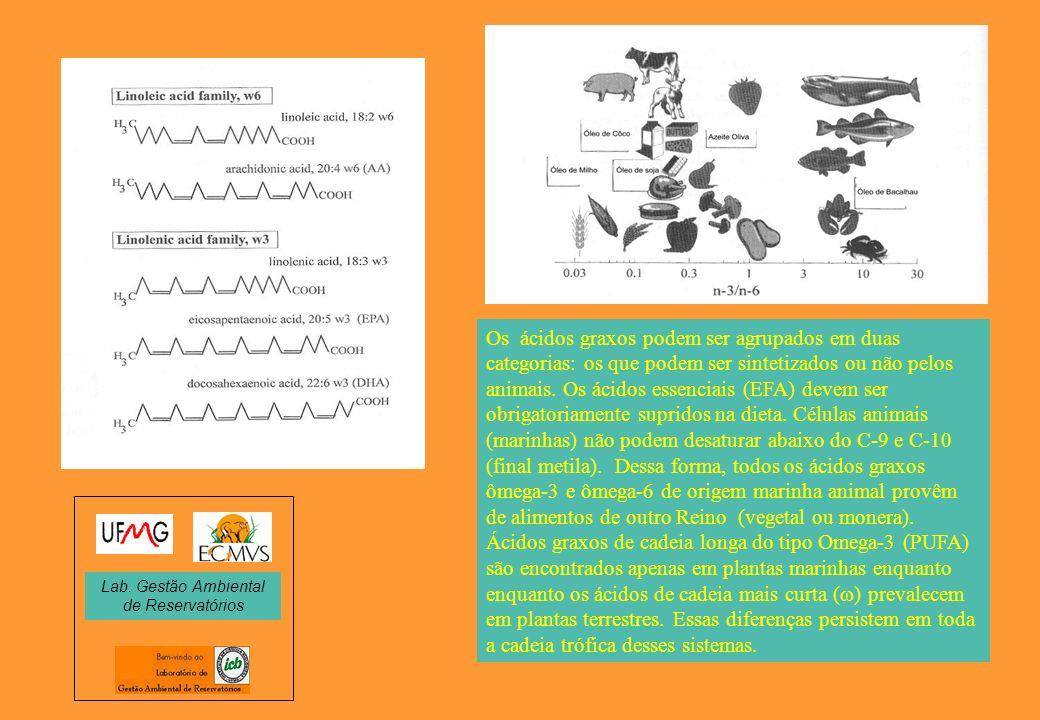 Os ácidos graxos podem ser agrupados em duas categorias: os que podem ser sintetizados ou não pelos animais. Os ácidos essenciais (EFA) devem ser obri