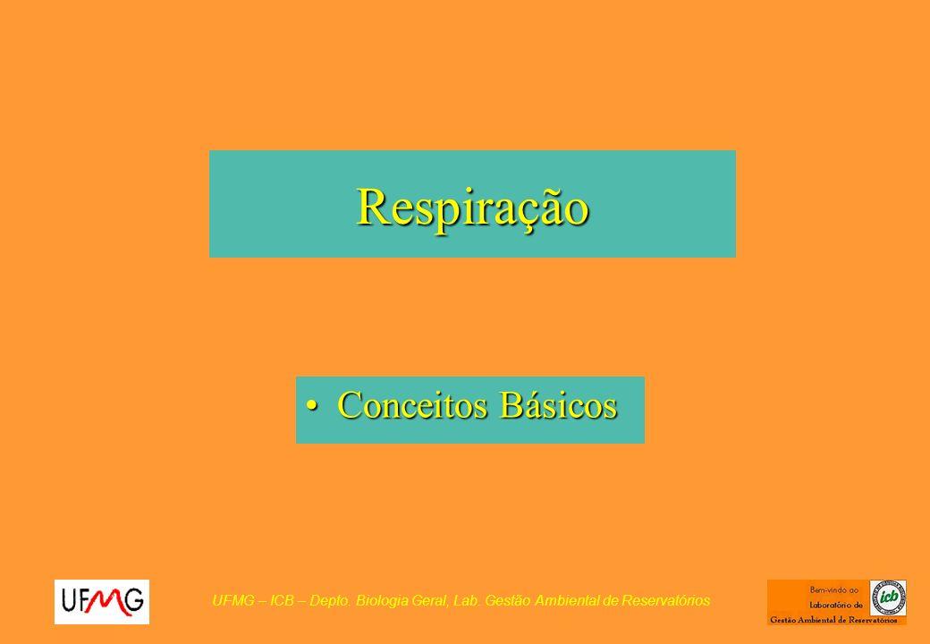 Respiração Conceitos BásicosConceitos Básicos UFMG – ICB – Depto. Biologia Geral, Lab. Gestão Ambiental de Reservatórios