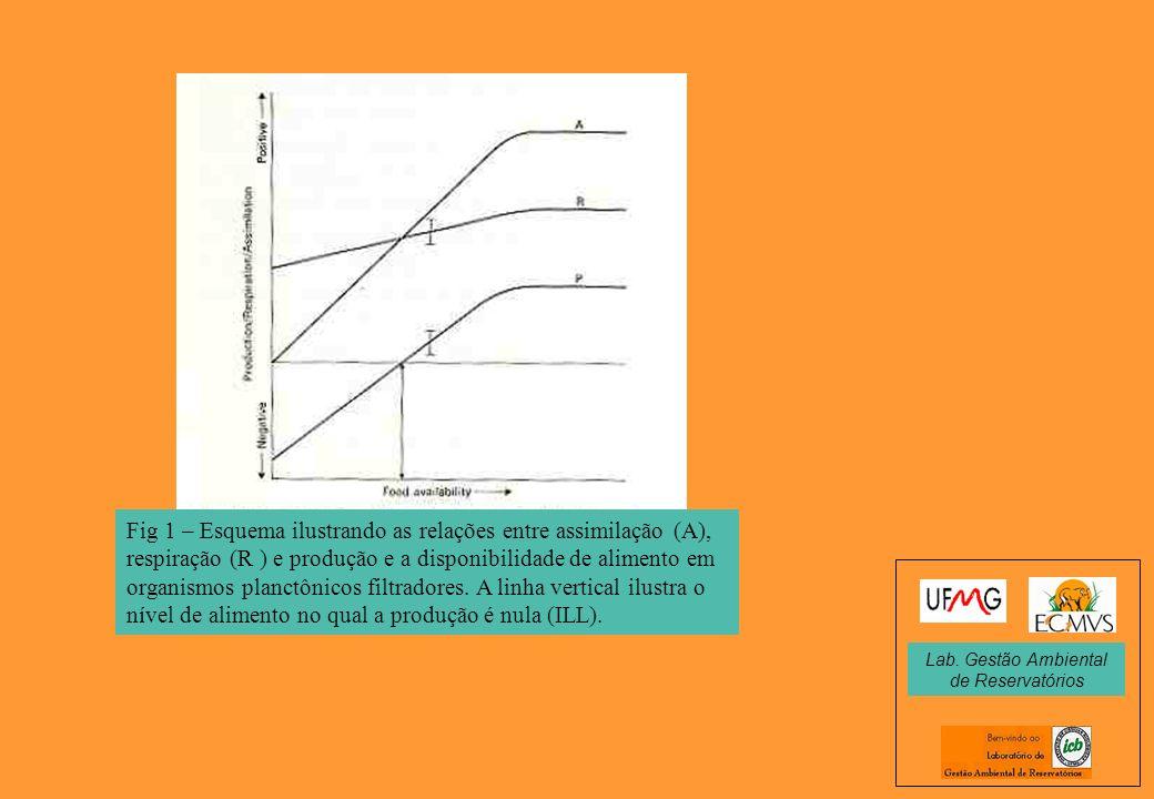 Fig 1 – Esquema ilustrando as relações entre assimilação (A), respiração (R ) e produção e a disponibilidade de alimento em organismos planctônicos fi