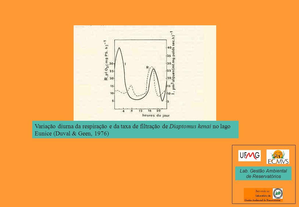 Variação diurna da respiração e da taxa de filtração de Diaptomus kenai no lago Eunice (Duval & Geen, 1976) Lab. Gestão Ambiental de Reservatórios