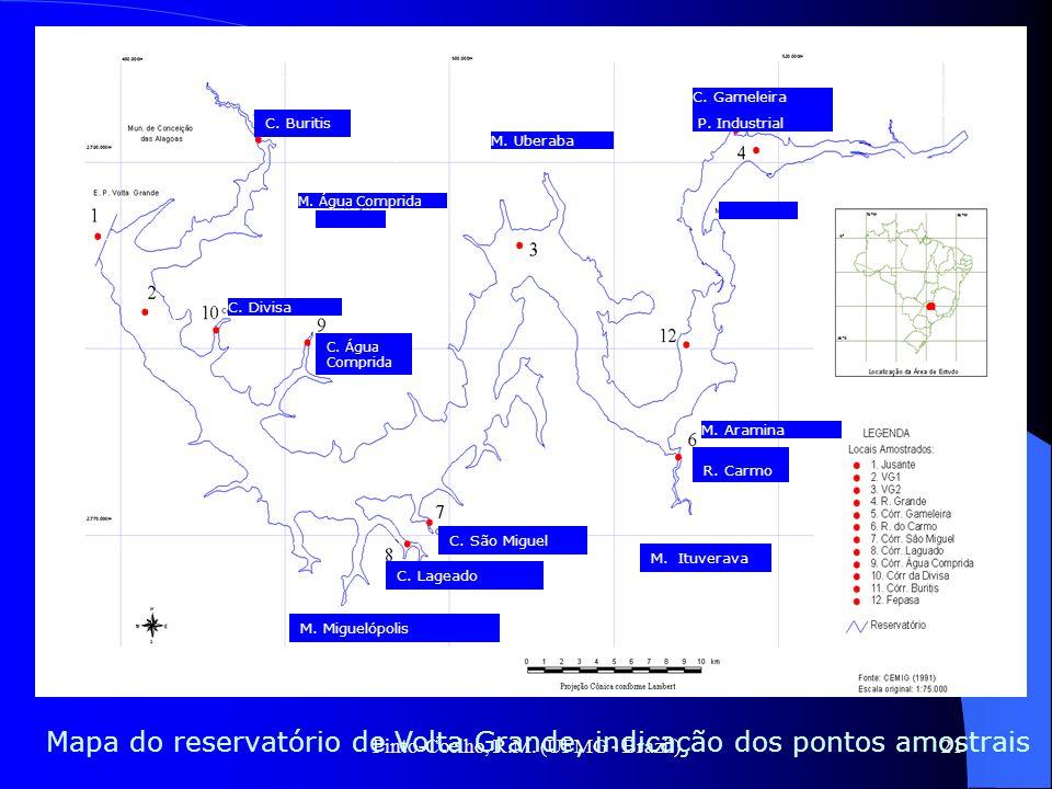 Pinto-Coelho, R.M. (UFMG - Brazil)21 Mapa do reservatório de Volta Grande, indicação dos pontos amostrais C. Buritis C. Água Comprida C. São Miguel C.
