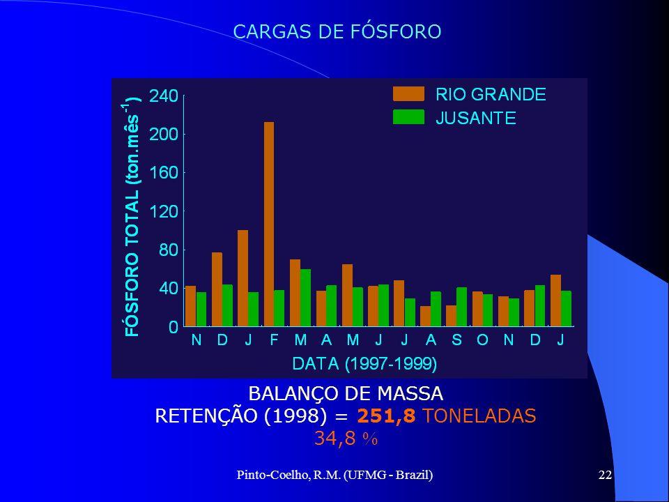 Pinto-Coelho, R.M. (UFMG - Brazil)22 BALANÇO DE MASSA RETENÇÃO (1998) = 251,8 TONELADAS 34,8 CARGAS DE FÓSFORO