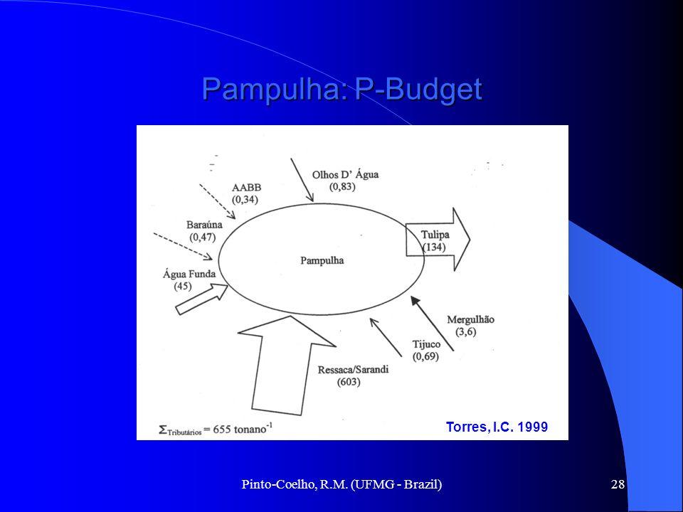 Pinto-Coelho, R.M. (UFMG - Brazil)28 Pampulha: P-Budget Torres, I.C. 1999