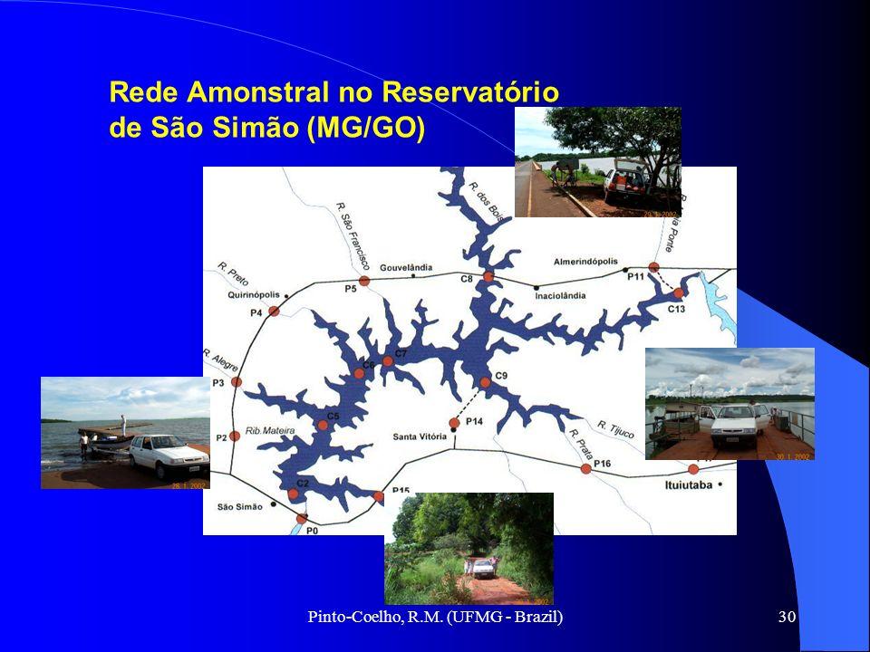 Pinto-Coelho, R.M. (UFMG - Brazil)30 Rede Amonstral no Reservatório de São Simão (MG/GO)