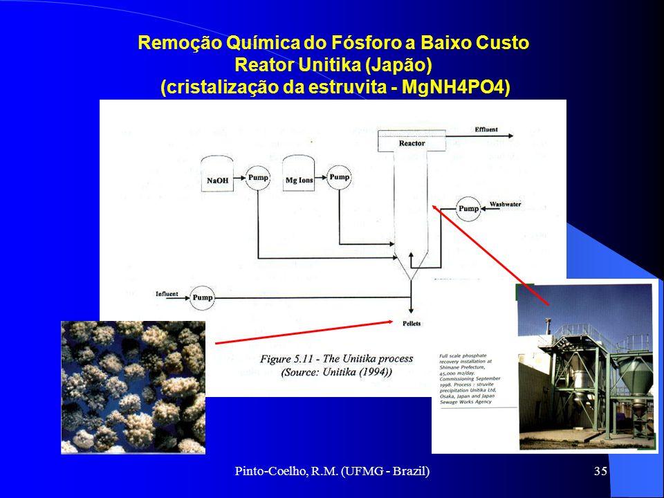 Pinto-Coelho, R.M. (UFMG - Brazil)35 Remoção Química do Fósforo a Baixo Custo Reator Unitika (Japão) (cristalização da estruvita - MgNH4PO4)