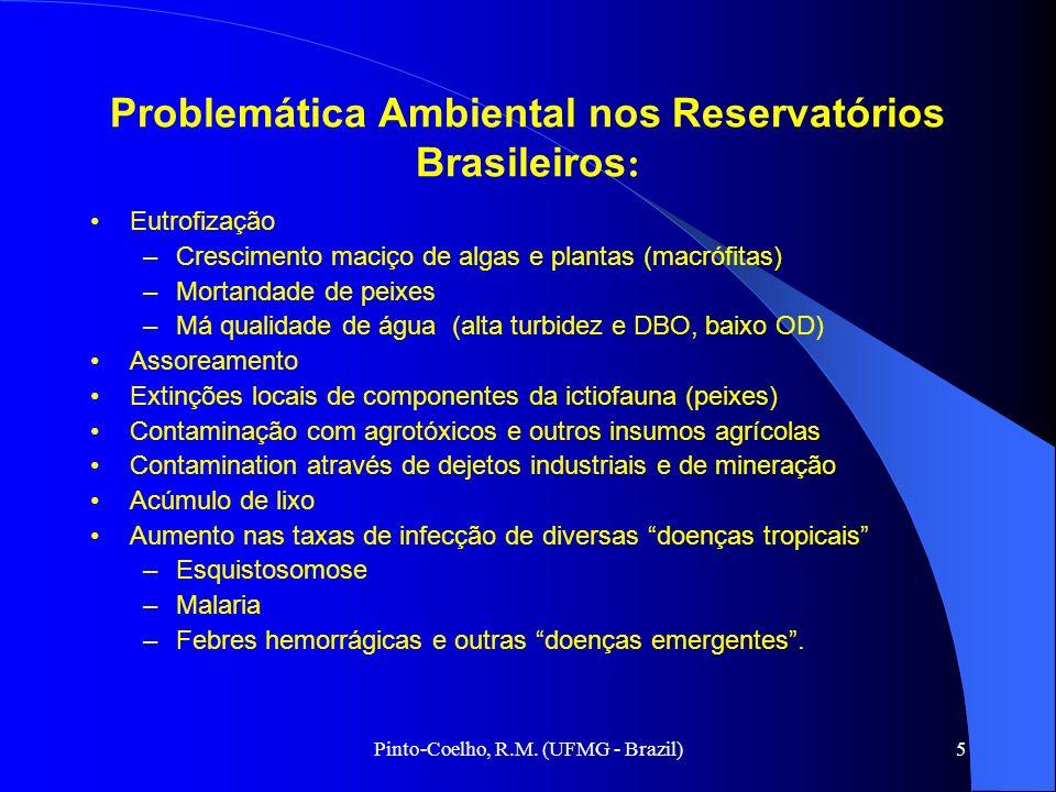 5 Problemática Ambiental nos Reservatórios Brasileiros : Eutrofização –Crescimento maciço de algas e plantas (macrófitas) –Mortandade de peixes –Má qu