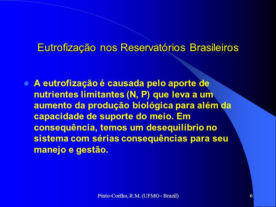 Pinto-Coelho, R.M. (UFMG - Brazil)6 Eutrofização nos Reservatórios Brasileiros A eutrofização é causada pelo aporte de nutrientes limitantes (N, P) qu