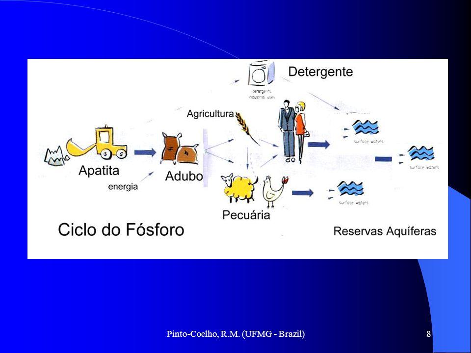 Pinto-Coelho, R.M. (UFMG - Brazil)8