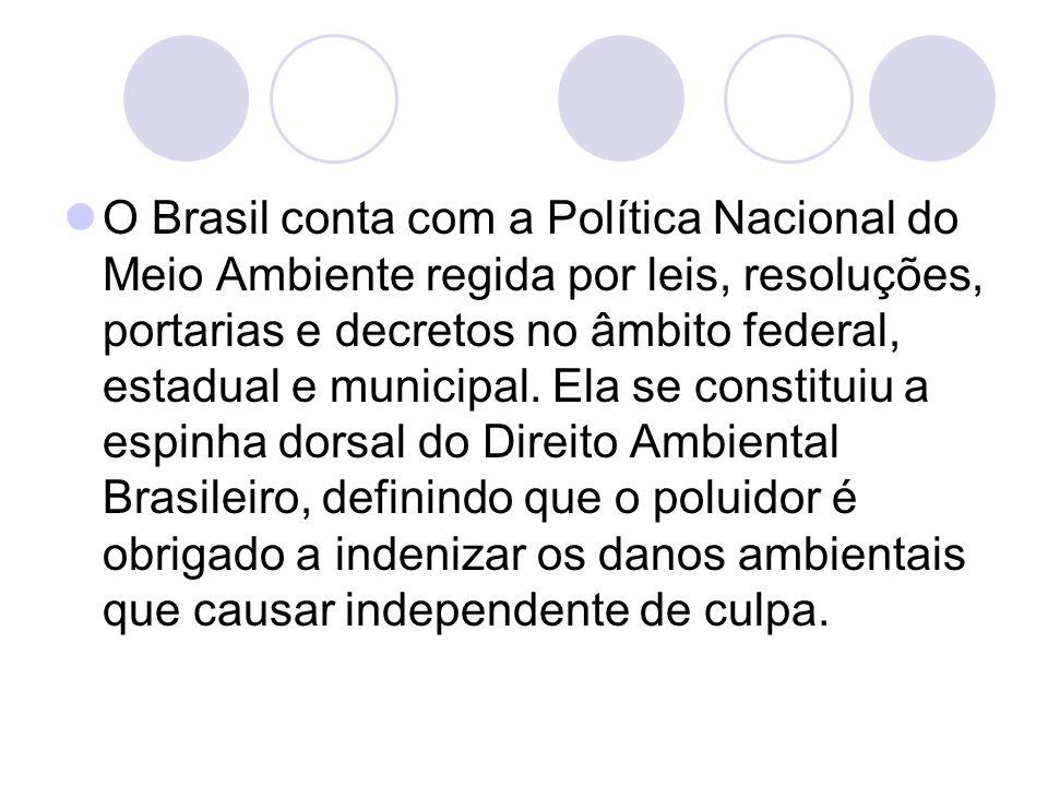 O Brasil conta com a Política Nacional do Meio Ambiente regida por leis, resoluções, portarias e decretos no âmbito federal, estadual e municipal. Ela