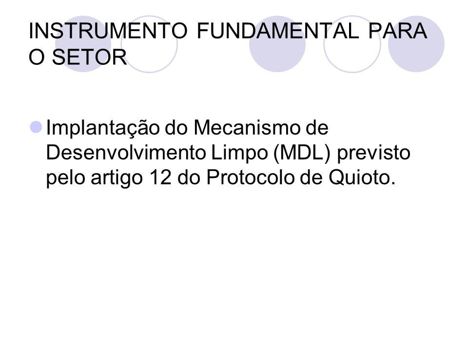 INSTRUMENTO FUNDAMENTAL PARA O SETOR Implantação do Mecanismo de Desenvolvimento Limpo (MDL) previsto pelo artigo 12 do Protocolo de Quioto.