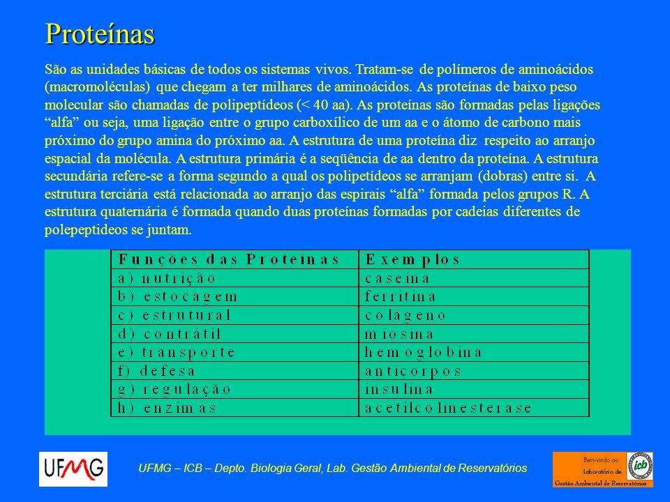 Proteínas UFMG – ICB – Depto. Biologia Geral, Lab. Gestão Ambiental de Reservatórios São as unidades básicas de todos os sistemas vivos. Tratam-se de