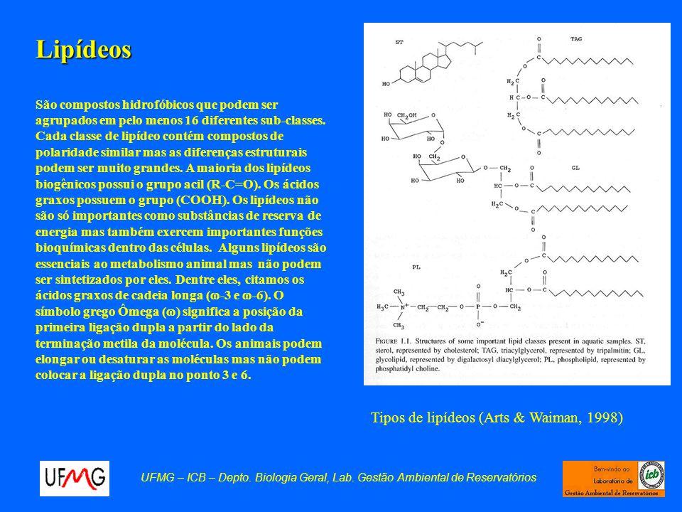 Lipídeos São compostos hidrofóbicos que podem ser agrupados em pelo menos 16 diferentes sub-classes. Cada classe de lipídeo contém compostos de polari