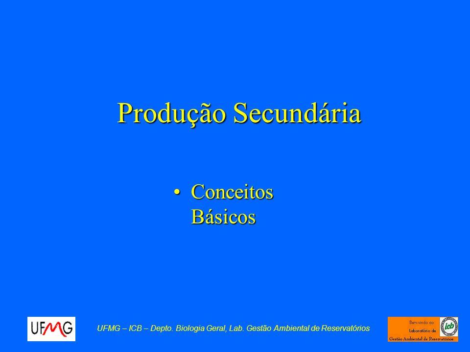 Produção Secundária Conceitos BásicosConceitos Básicos UFMG – ICB – Depto. Biologia Geral, Lab. Gestão Ambiental de Reservatórios
