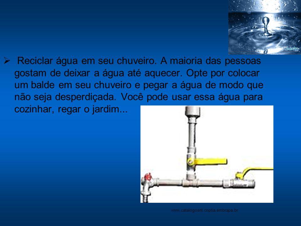 Reciclar água em seu chuveiro. A maioria das pessoas gostam de deixar a água até aquecer. Opte por colocar um balde em seu chuveiro e pegar a água de