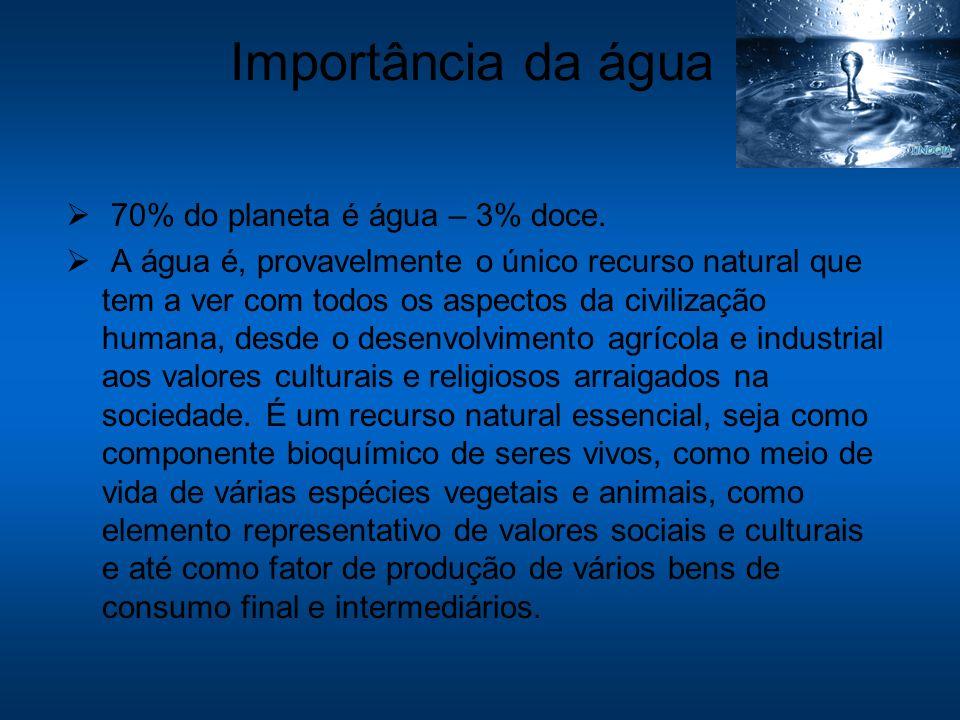 Importância da água 70% do planeta é água – 3% doce. A água é, provavelmente o único recurso natural que tem a ver com todos os aspectos da civilizaçã