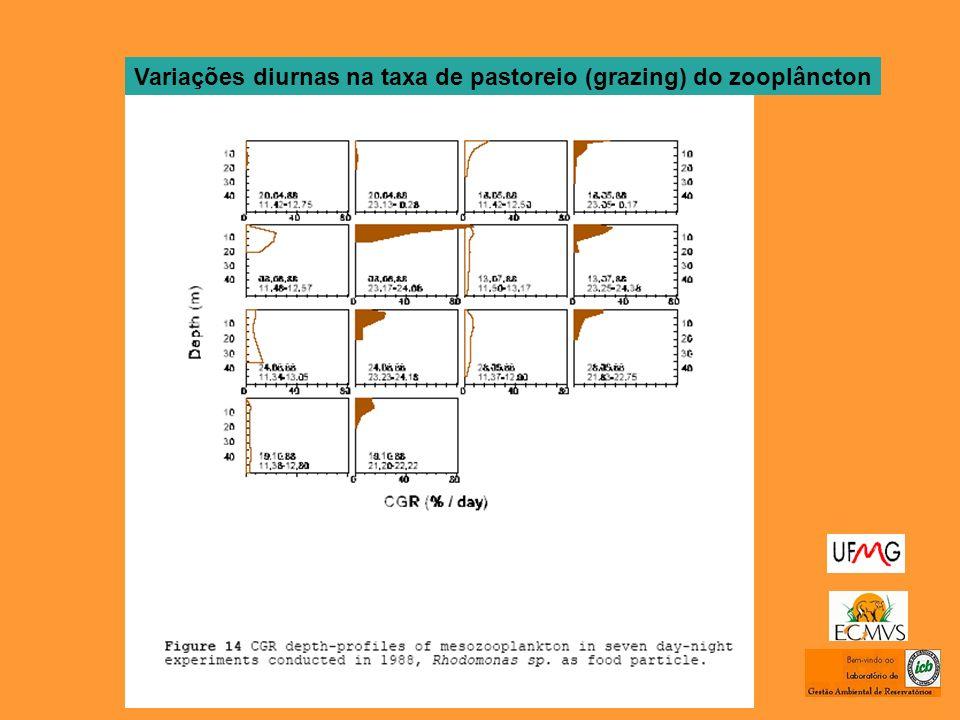 Variações diurnas na taxa de pastoreio (grazing) do zooplâncton