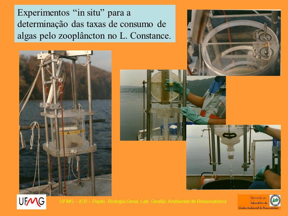 Experimentos in situ para a determinação das taxas de consumo de algas pelo zooplâncton no L. Constance. UFMG – ICB – Depto. Biologia Geral, Lab. Gest