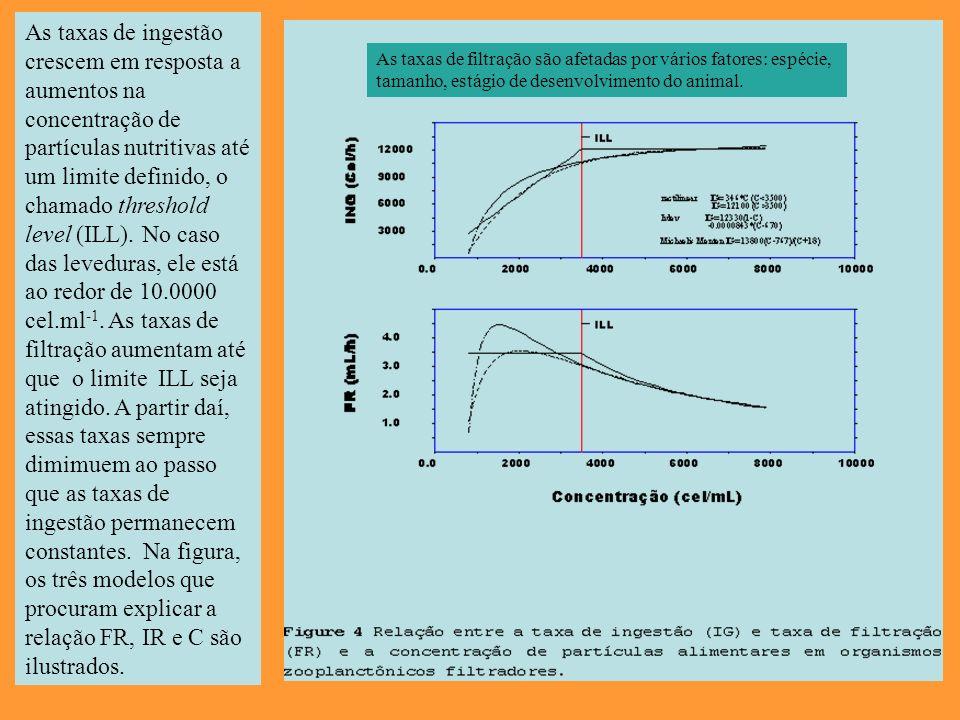 As taxas de ingestão crescem em resposta a aumentos na concentração de partículas nutritivas até um limite definido, o chamado threshold level (ILL).