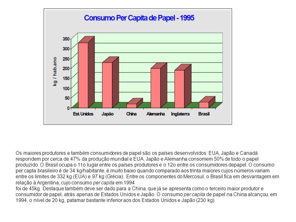 Os maiores produtores e também consumidores de papel são os países desenvolvidos: EUA, Japão e Canadá respondem por cerca de 47% da produção mundial e