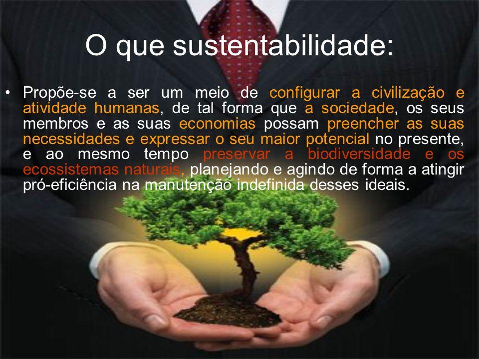 O que sustentabilidade: Propõe-se a ser um meio de configurar a civilização e atividade humanas, de tal forma que a sociedade, os seus membros e as su