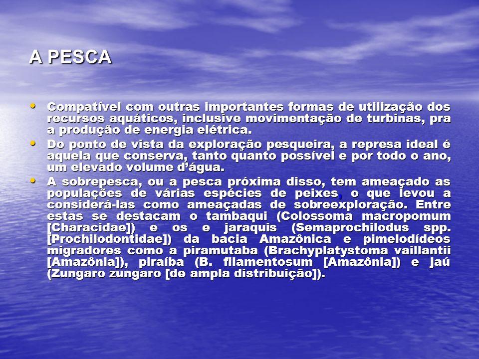 A PESCA Compatível com outras importantes formas de utilização dos recursos aquáticos, inclusive movimentação de turbinas, pra a produção de energia elétrica.