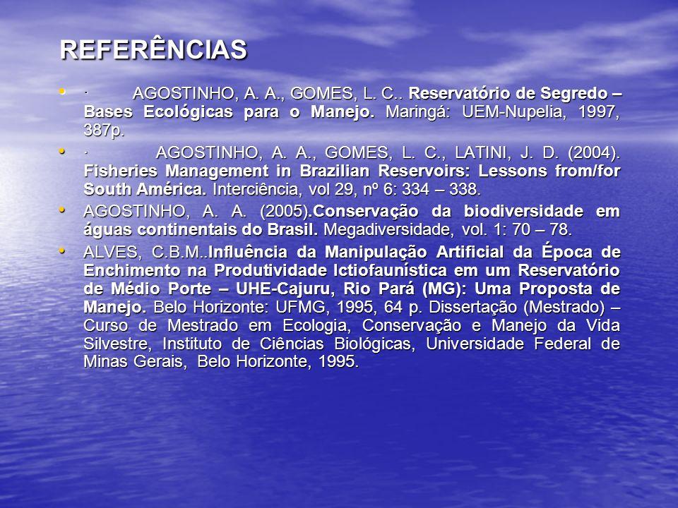 REFERÊNCIAS REFERÊNCIAS · AGOSTINHO, A.A., GOMES, L.