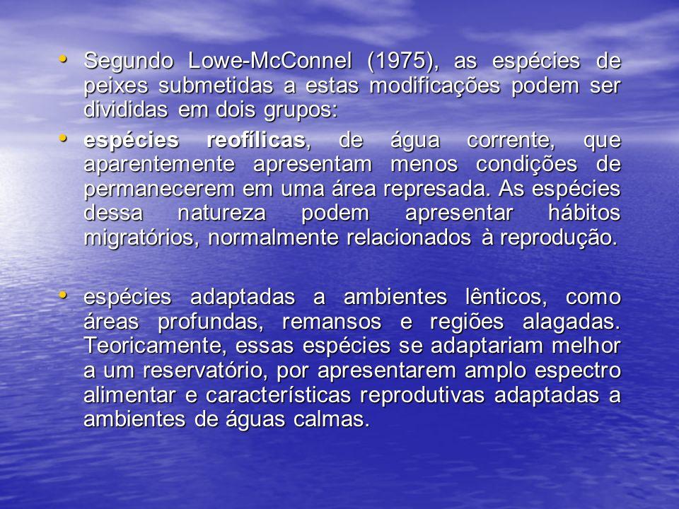 Segundo Lowe-McConnel (1975), as espécies de peixes submetidas a estas modificações podem ser divididas em dois grupos: Segundo Lowe-McConnel (1975), as espécies de peixes submetidas a estas modificações podem ser divididas em dois grupos: espécies reofílicas, de água corrente, que aparentemente apresentam menos condições de permanecerem em uma área represada.