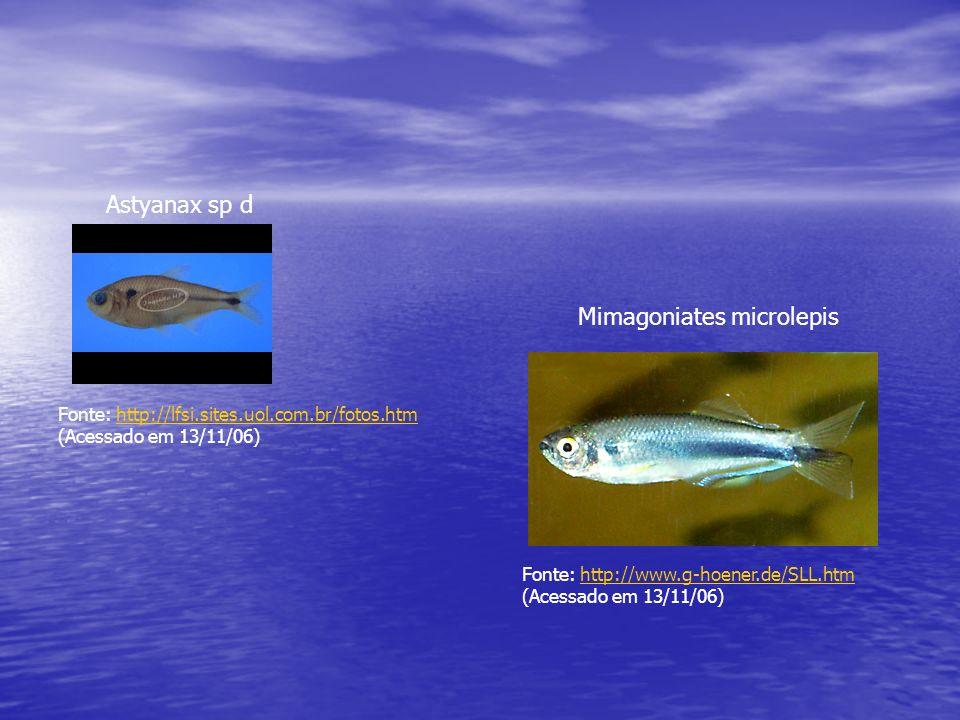 Durante a estação de reprodução dos peixes, que corresponde ao período chuvoso, a época mais propícia para a realização da cheia induzida vai de dezembro à primeira quinzena de janeiro.