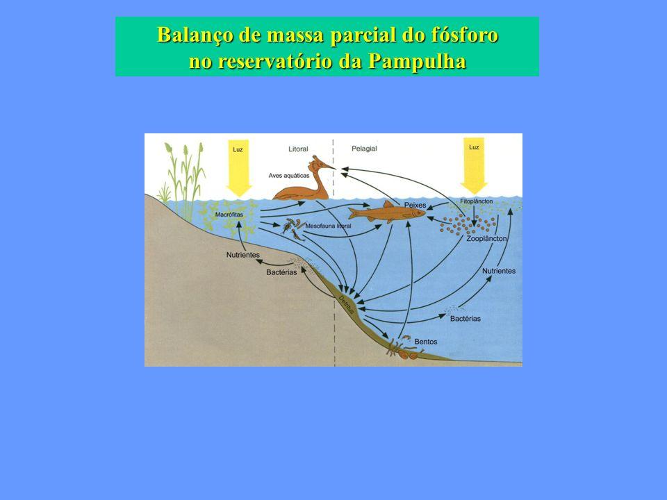 Balanço de massa parcial do fósforo no reservatório da Pampulha