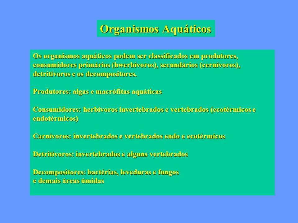 Organismos Aquáticos Os organismos aquáticos podem ser classificados em produtores, consumidores primários (hwerbívoros), secundários (cernívoros), de