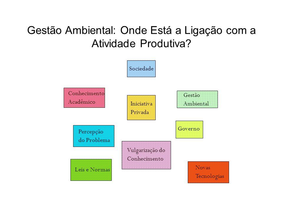 Gestão Ambiental: Onde Está a Ligação com a Atividade Produtiva.