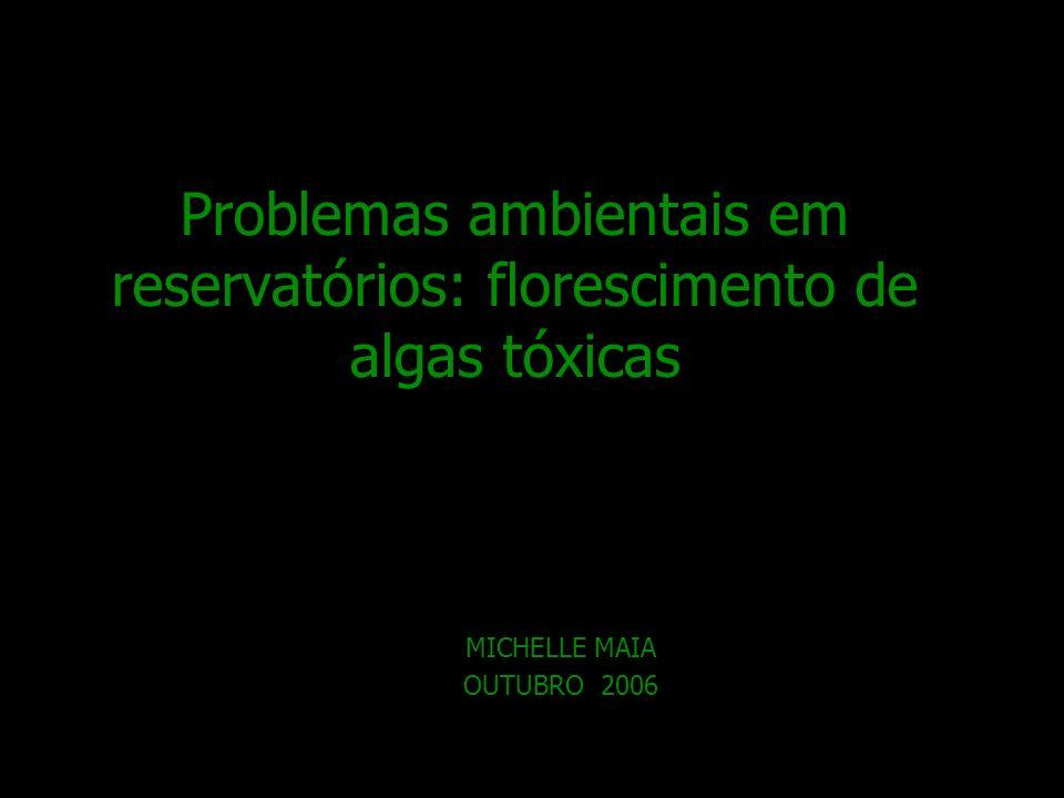 Problemas ambientais em reservatórios: florescimento de algas tóxicas MICHELLE MAIA OUTUBRO 2006