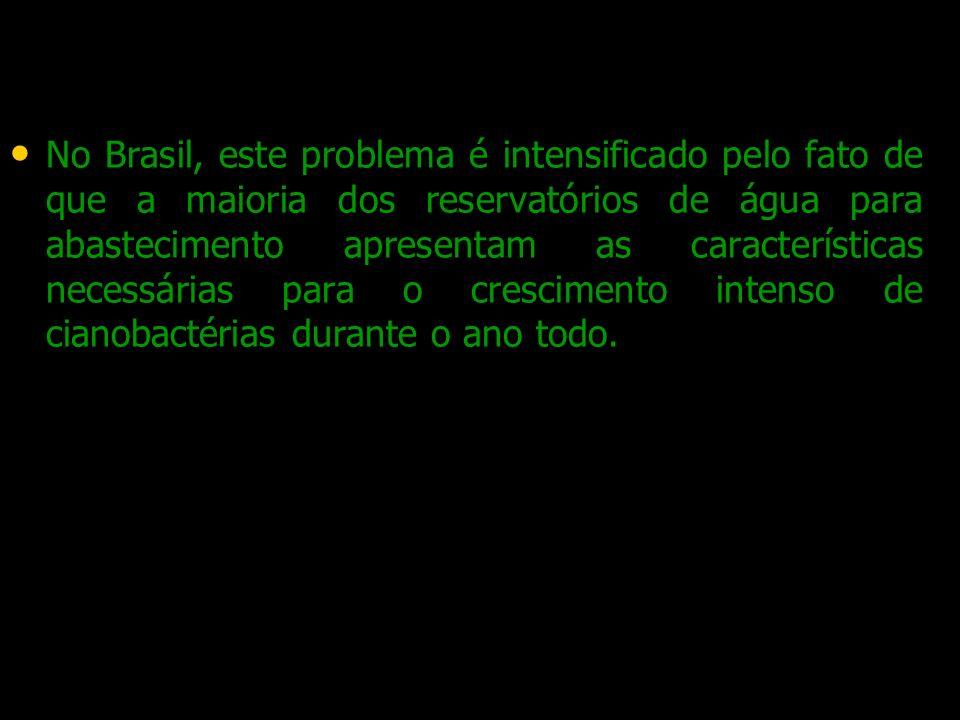 No Brasil, este problema é intensificado pelo fato de que a maioria dos reservatórios de água para abastecimento apresentam as características necessá
