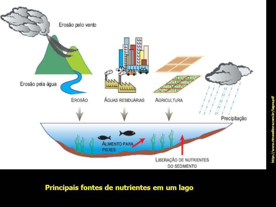 Principais fontes de nutrientes em um lago http://www.rimaeditora.com.br/lagos.pdf